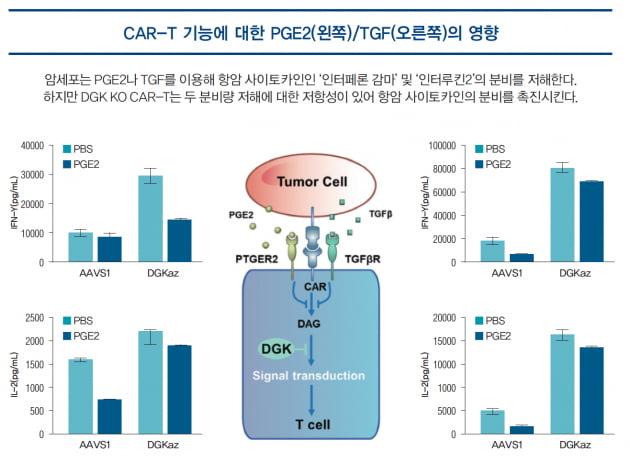 [파이프라인 아카이브] ❷ 툴젠 'CRISPR CAR-T'
