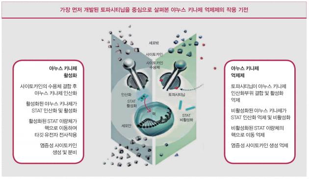 [Cover Story - part.2 OVERVIEW] 자가면역질환, 표적치료제와 TNF-α억제제부터 면역억제제·소분자 합성약까지
