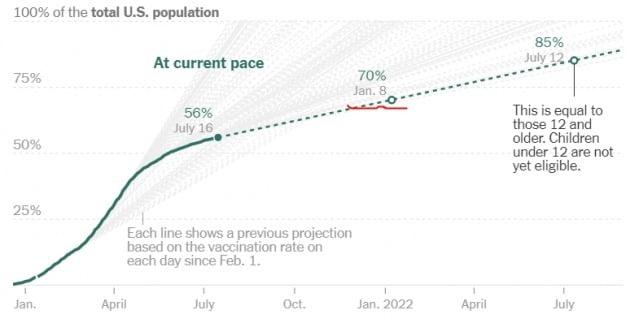 미국의 전체 인구 대비 백신 접종률은 지난 16일 현재 56%로 기록됐다. 집단면역 기준인 70%를 넘기려면 내년 1월은 돼야 할 것으로 관측된다. 미 질병통제예방센터(CDC) 및 뉴욕타임스 제공