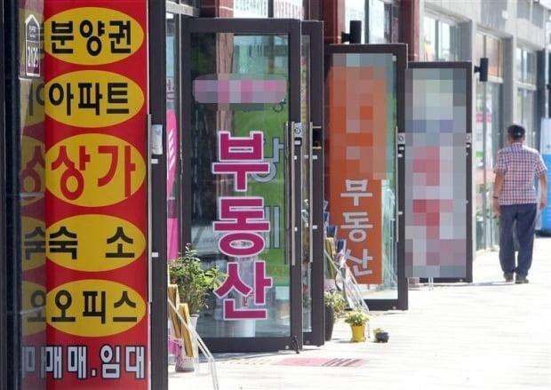 중개업소 밀집 지역. /연합뉴스