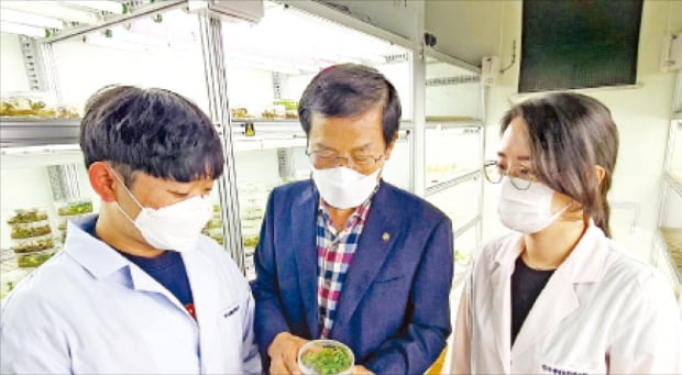 식물 이용한 코로나 백신 '눈앞'…한국도 '그린 백신' 개발 속도