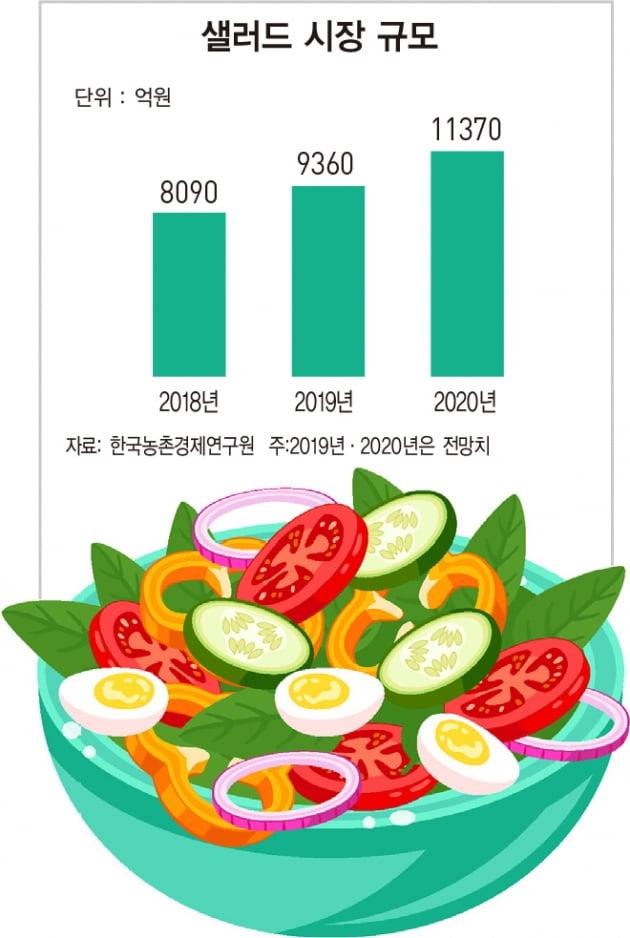 외식·창업 시장에 부는 '샐러드 열풍'