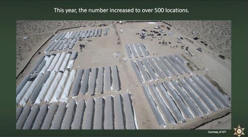 캘리포니아 가뭄에 물 도둑 기승…대마초 업자 '물 차떼기'