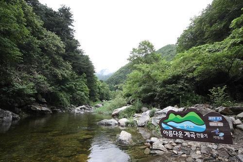 """경기도 """"하천·계곡 불법시설 적발 때 즉시 강제 철거"""""""