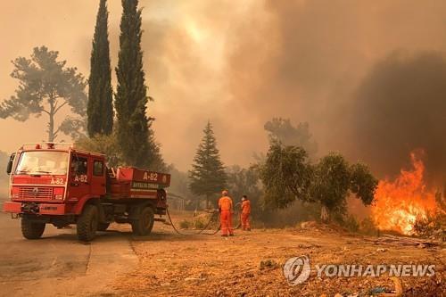 터키 남부 대규모 산불로 4명 사망·200여 명 부상