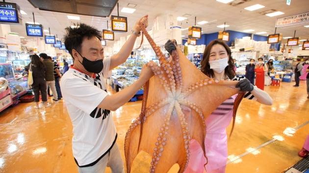 JTBC '할명수' 바다의 왕자 박명수, 8kg 거대 문어로 해신탕 요리 도오전~~