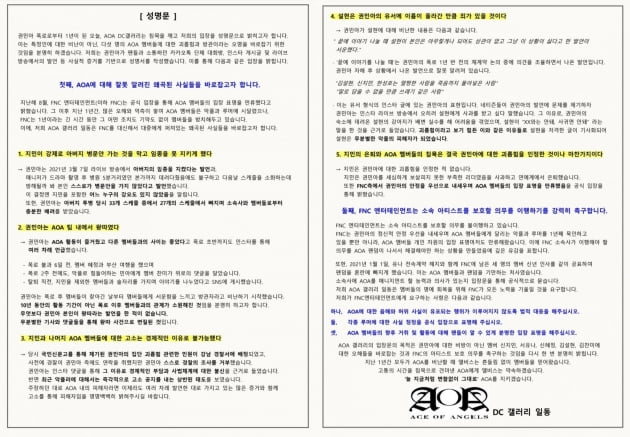 AOA 팬들이 발표한 성명문/ 사진=디시앤갤러리 캡처
