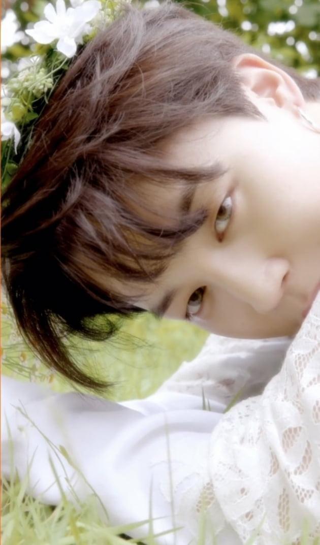 방탄소년단 지민, 8초만에 팬들 홀린 순백의 청순미...7시간30분만에 100만 돌파