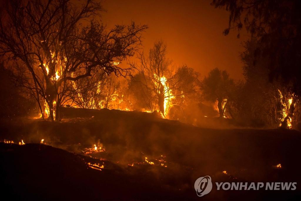 """키프로스서 사상 최악 산불…""""4명 사망, 8개마을 주민 대피"""""""