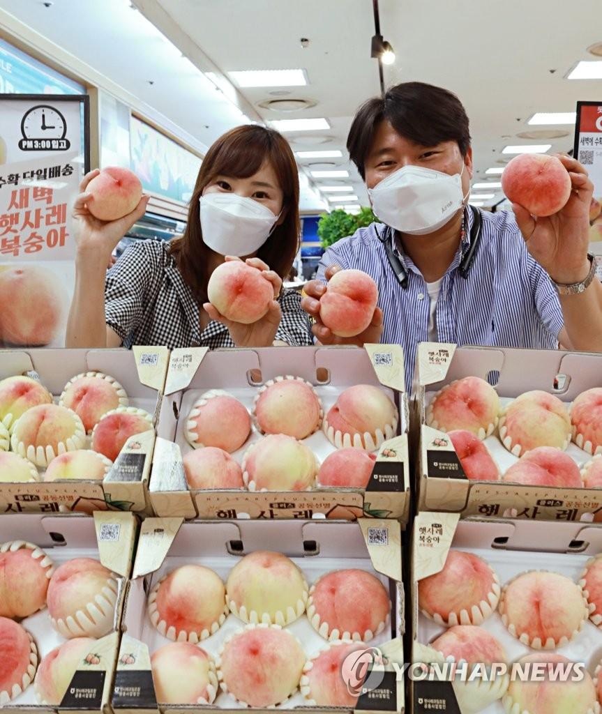 [주말N쇼핑] 무더위 속 의류·신선식품 할인행사