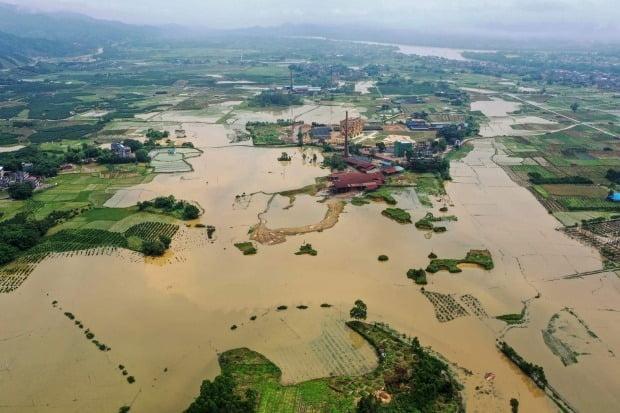중국 남부 광시·장족자치구에 폭우가 내린 영향으로 지난 13일 룽안현의 농경지가 물에 잠겨 있다. / 사진=AFP