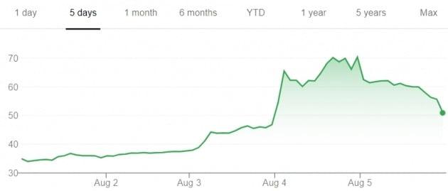 지난달 29일 미국 나스닥에 상장한 증권거래 앱 로빈후드 주가가 롤러코스터를 타고 있다. 전날까지 공모가 대비 두 배 가까이 뛰었던 이 회사 주가는 5일(현지시간) 28%가량 급락했다.