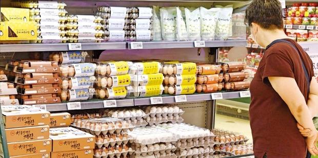 < 선뜻 담지 못하겠네… > 3일 통계청이 발표한 '7월 소비자물가동향'에 따르면 지난달 계란 가격은 전년 같은 달 대비 57.0% 상승했다. 지난해 확산됐던 고병원성 조류인플루엔자(AI) 여파로 산란계가 부족해서다. 정부는 계란 가격을 안정시키기 위해 다음달까지 계란 총 2억 개를 수입하기로 했다.  김병언  기자