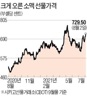 오뚜기·농심發 '도미노 가격 인상'…음식료株의 시간 온다