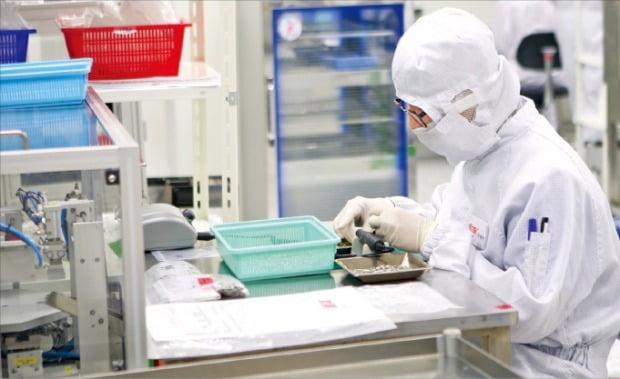 오스템임플란트 직원이 부산 공장에서 임플란트 부품을 확인하고 있다.  /오스템임플란트  제공