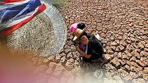 태국 가뭄피해 대응 돕는다…한-태 물관리협력 공동위원회 개최