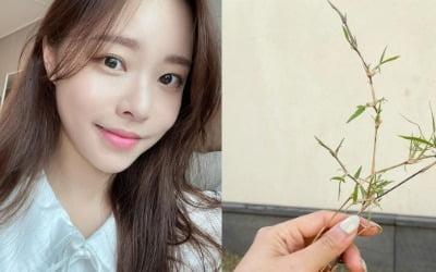 """'박성광♥' 이솔이,이웃에 민폐 """"어쩌지"""""""