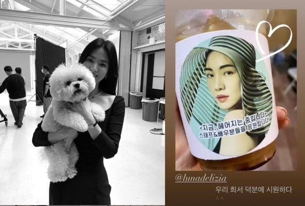 """송혜교, """"우리 최희서 덕분에 시원하다""""...연예계 마당발[TEN★]"""