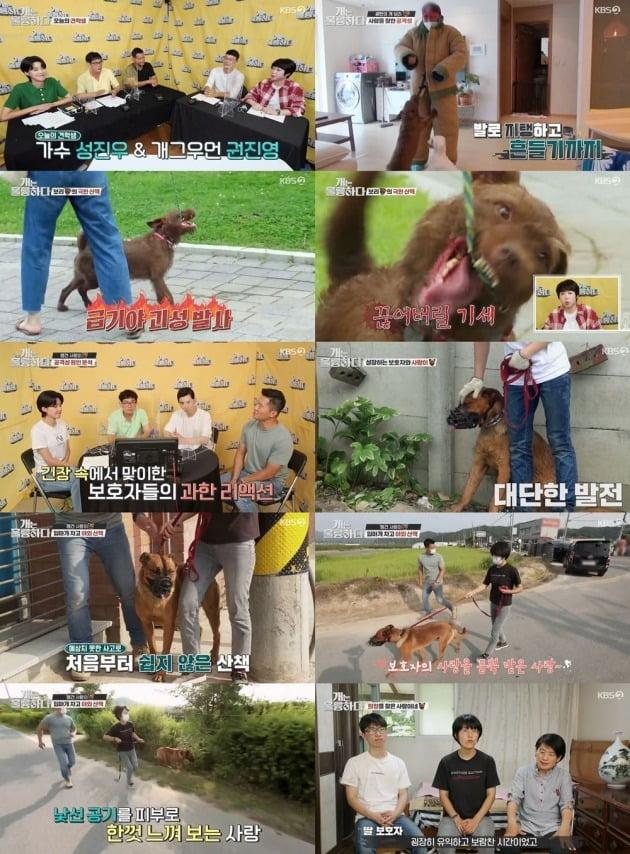 사진=KBS '개훌륭' 방송 화면.