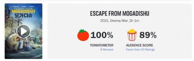 영화 '모가디슈'가 월드와이드 박스오피스 5위, 로튼토마토 신선도 지수 100%를 기록했다. / 사진=스크린데일리, 로튼토마토