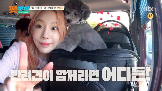 /사진=JTBC 새 예능프로그램 '개취존중 여행배틀 - 펫키지' 티저 영상