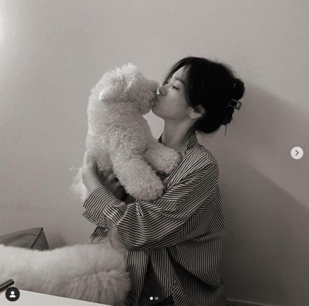 송혜교, 반할 수 밖에 없는 아름다움...반려견과 뽀뽀타임[TEN★]