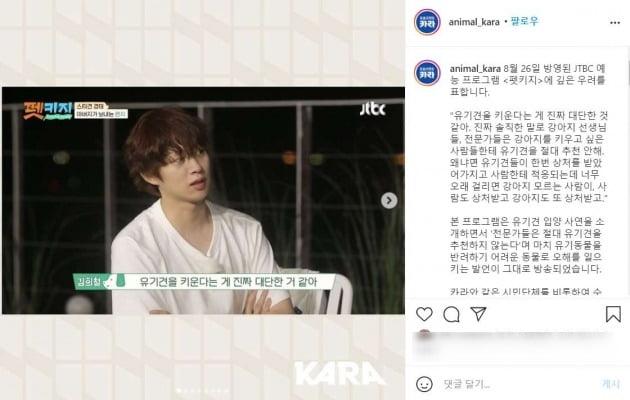 /사진=동물보호단체 카라 공식 SNS 캡처