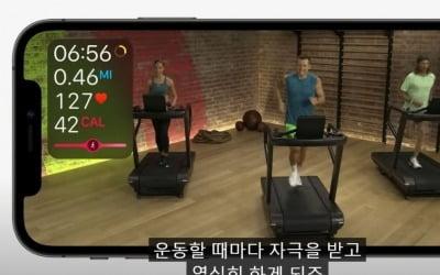 """""""한두 번도 아니고…"""" 또 한국 외면한 애플"""