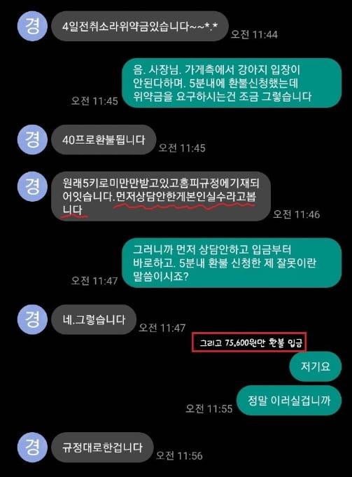 """경주펜션 논란 확산…""""아줌마 아니고 사장님!"""" 과거 글 재조명"""