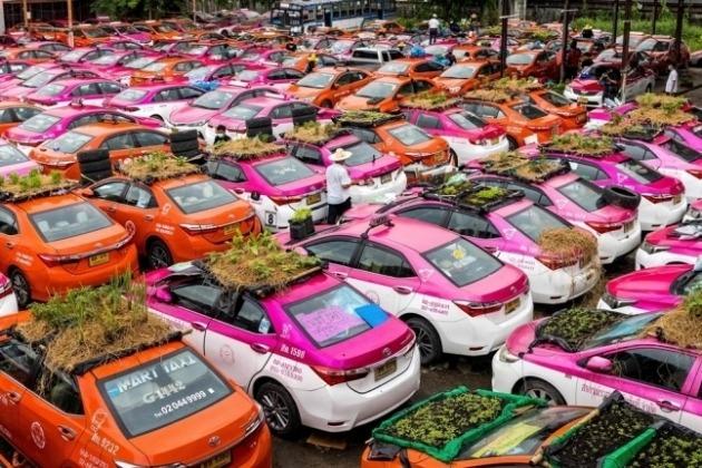 방콕 택시들의 변신 / 사진 = AFP