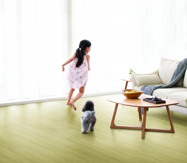 한솔홈데코, 국내 첫 반려동물 맞춤형 '한솔펫마루' 내놔
