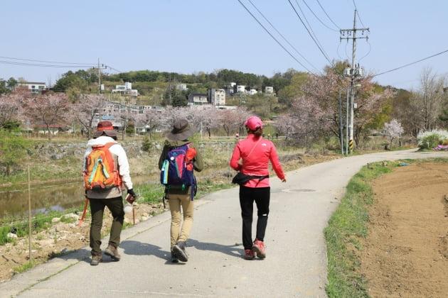 양평군, 오는 10월 9일부터 '양평 물소리길 가을 걷기여행 쉼' 9일간 개최