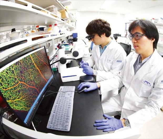 KAIST 의과학대학원 혈관질환연구실 연구원들이 혈관 이미지 데이터를 보며 질환 유무를 확인하고 있다. /KAIST  제공