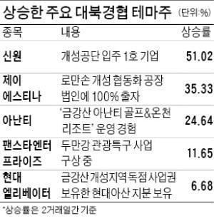 김여정 말 한마디에…대북株 '들썩'