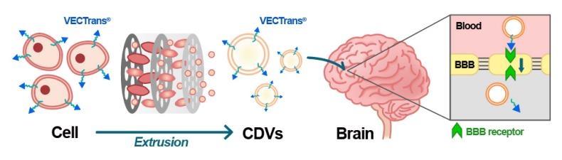 엠디뮨, 佛 기업과 중추신경계 약물전달시스템 연구개발 협력