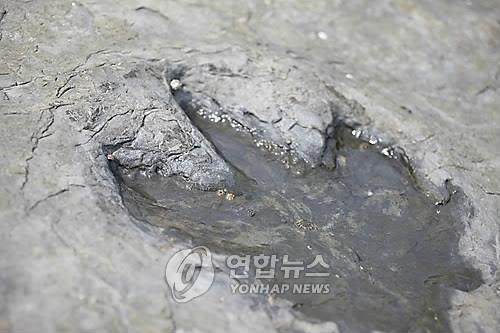 """""""사라진 공룡 나와라""""…경남고성공룡세계엑스포 카운트다운"""