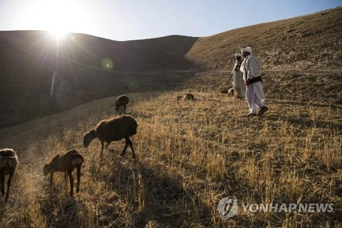도시로 간 탈레반에 평화 찾은 아프간 시골…폭력·분쟁 사라져