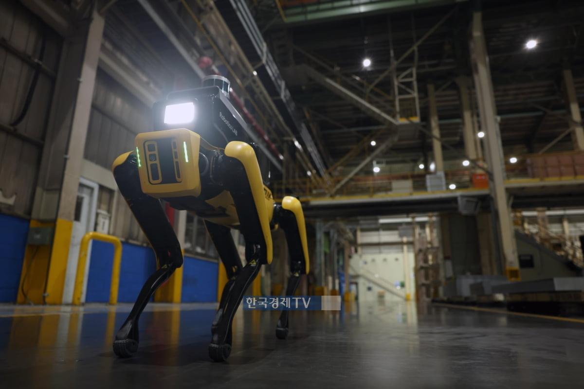 현대차 공장, AI 탑재한 `로봇견`이 지킨다