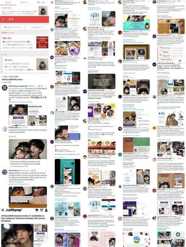 방탄소년단 뷔 반려견 '연탄' 생일도 챙기는 팬들의 기부 행렬