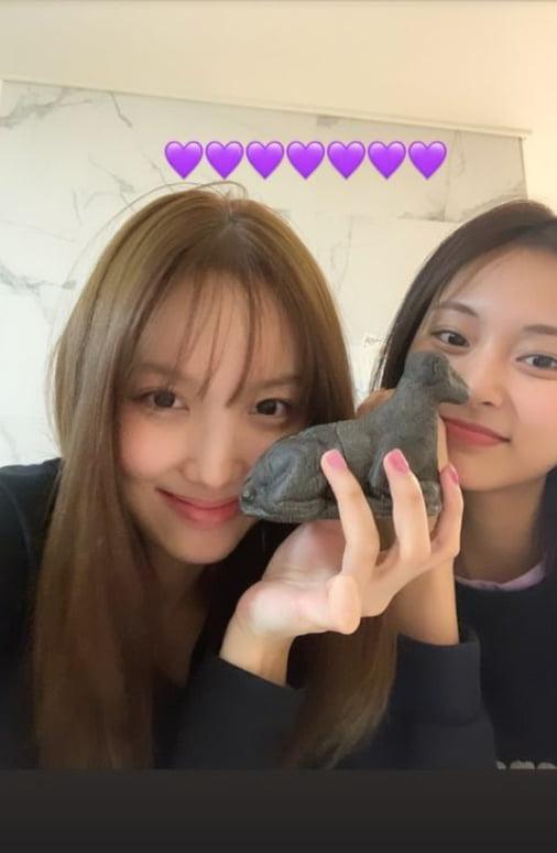 트와이스 나연, 쯔위가 준 요상한 빵...왜 공룡인가?[TEN★]