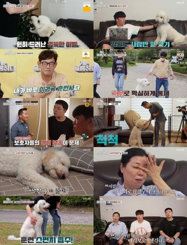 사진=KBS2 '개는 훌륭하다' 캡처