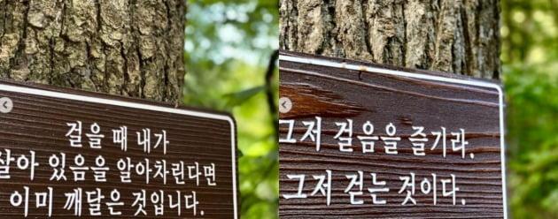 사진=김혜수 인스타그램