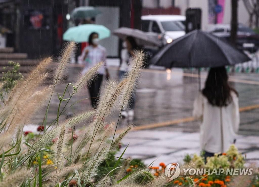 [내일날씨] 가을을 재촉하는 비…낮부터 차차 그쳐