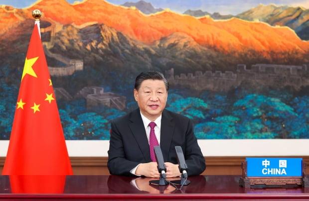 시진핑 중국 국가주석. /사진=신화통신, 연합뉴스