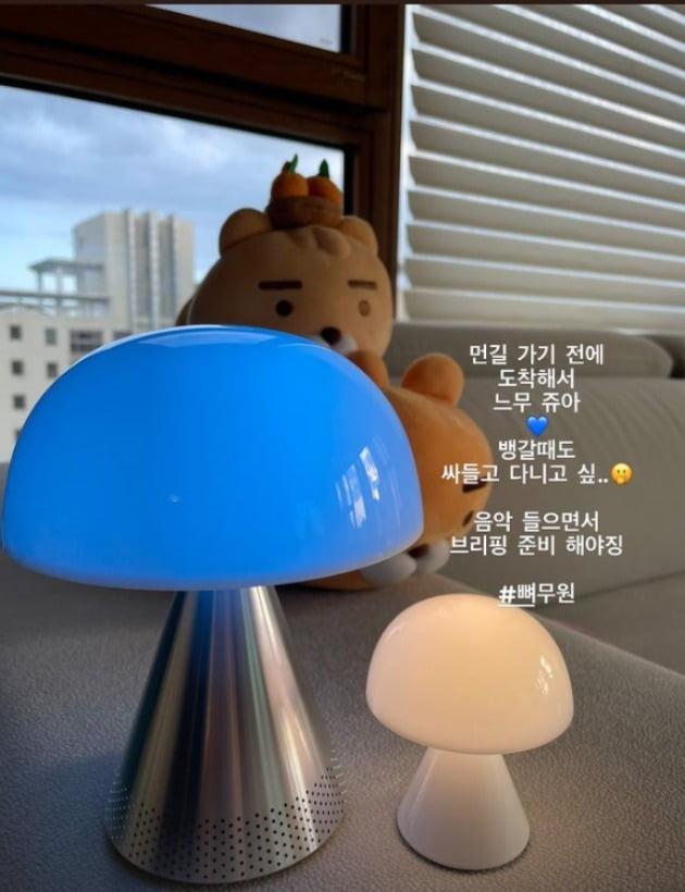 사진=정태우 아내 장인희 인스타그램