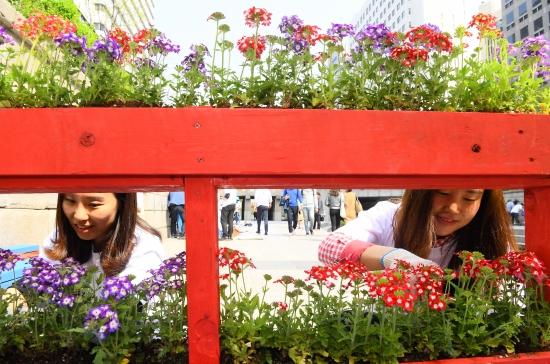 19일 청계천 모전교와 광통교 사이에서 열린 '청계천 쌈지정원 행사'에서 참가자들이 재활용품으로 정원을 꾸미고 있다.  쌈지정원이란 작은 주머니라는 뜻의 '쌈지'와 '정원(庭園)'의 합성어로 작은 정원을 의미한다.  강은구기자 egkang@hankyung.com  2018.4.19