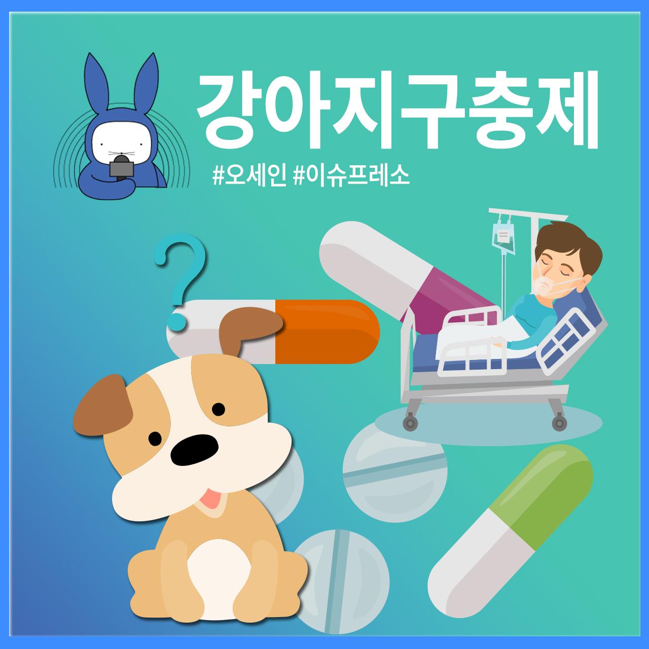 [오디오래빗] 암 치료 소문에 품절까지 #강아지구충제