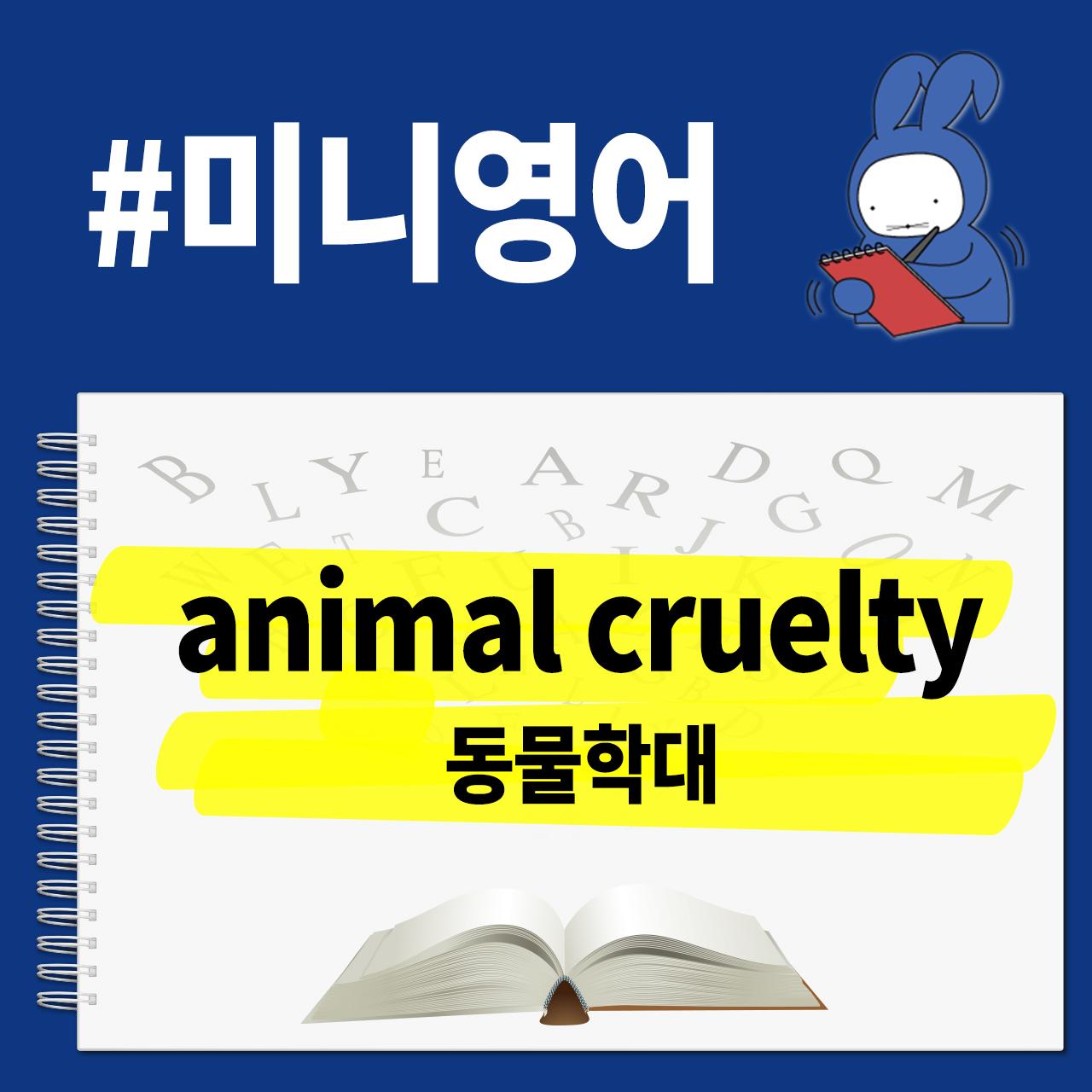 [오디오래빗] 미국은 7년 한국은 벌금? #동물학대 영어로 뭐게